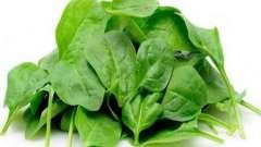 Зелений шпинат корисний для зору, з ним серце в порядку і відмінний настрій!